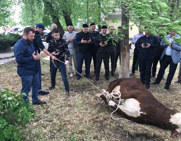 Сегодня в Чечне отмечается День памяти и скорби народов Чеченской Республики